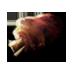roasted_pork_knuckle.png